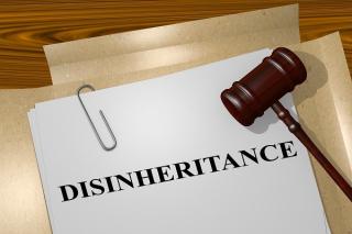 Can I Disinherit My Child